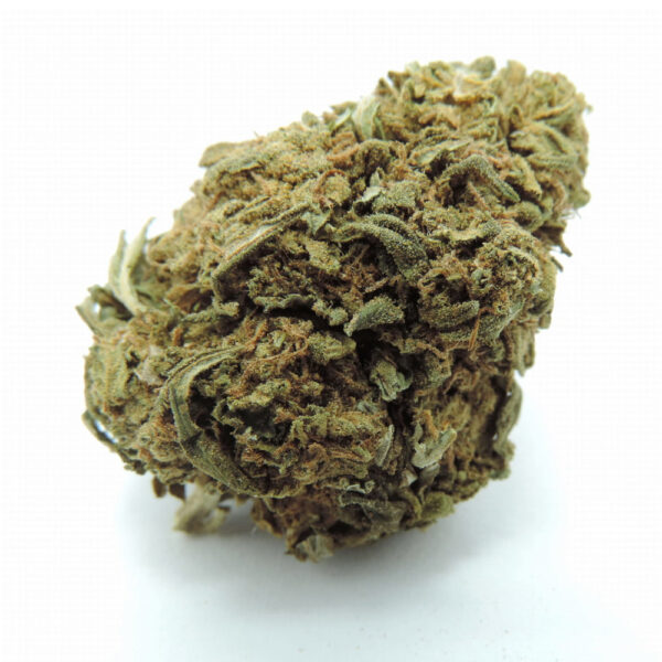 Susz_cbd_Cannatonic_main_1