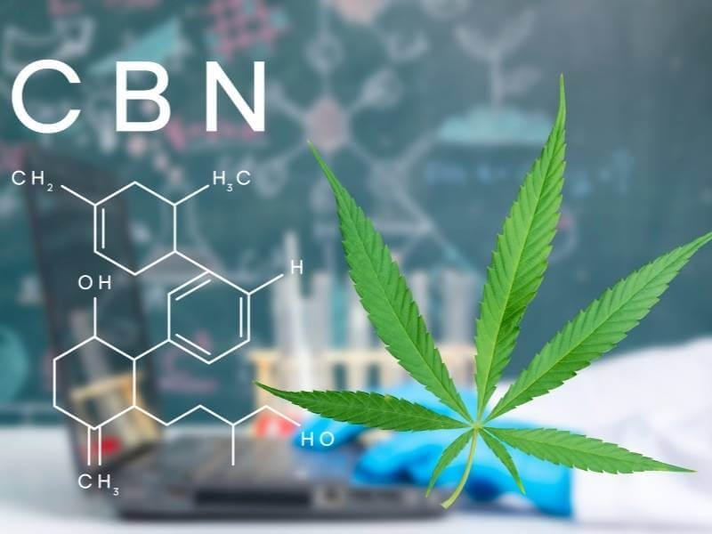 cbn cannabigerol